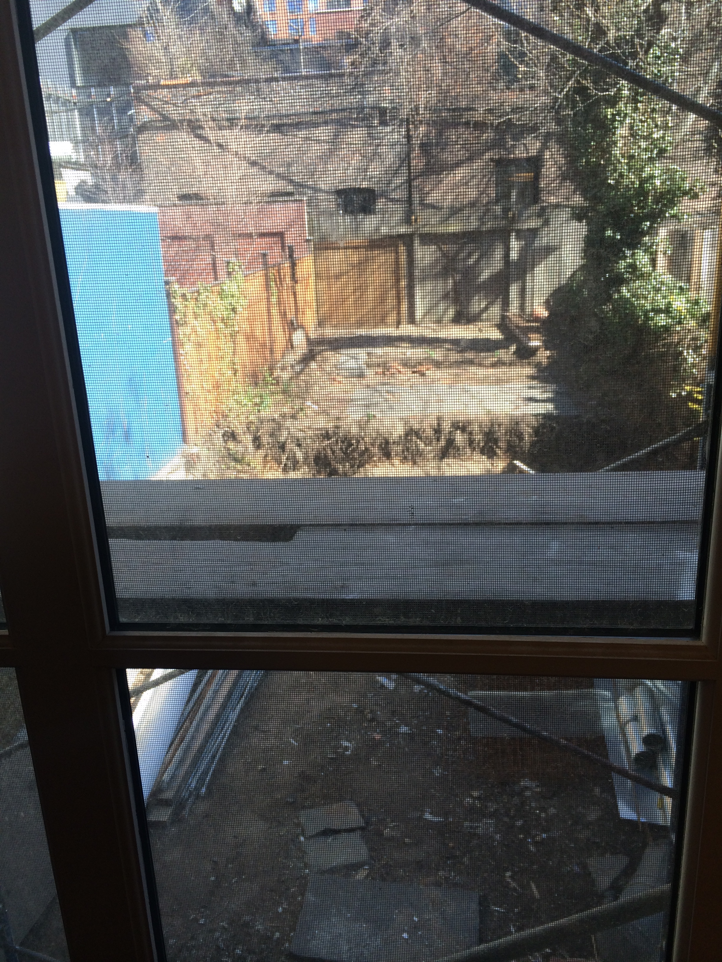 Cobble Hill Brooklyn / BEFORE