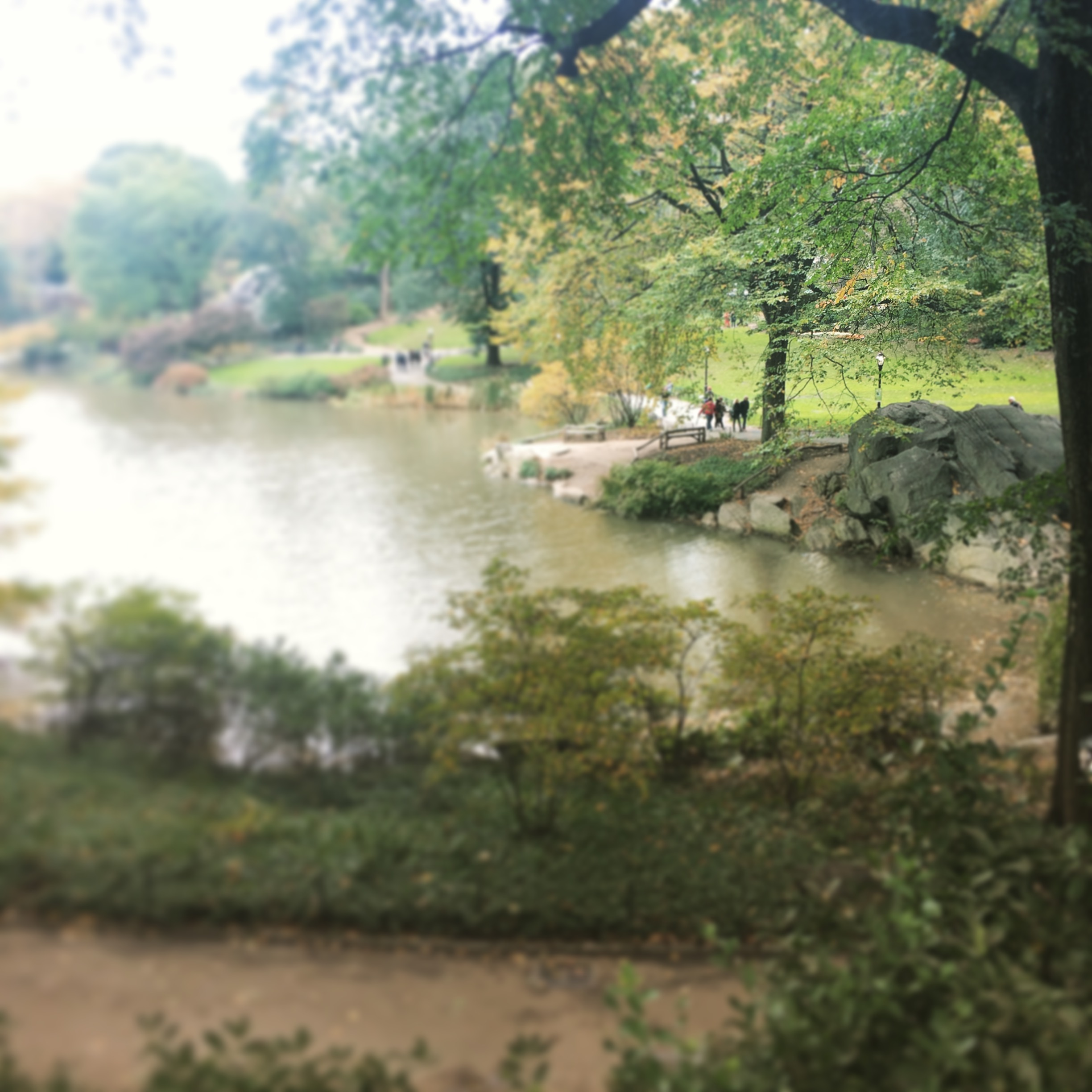 Central Park's design by Charles Vaux and Frederick Law Olmsted was influenced by the Hudson River school of painters including Thomas Cole and Frederick Church.