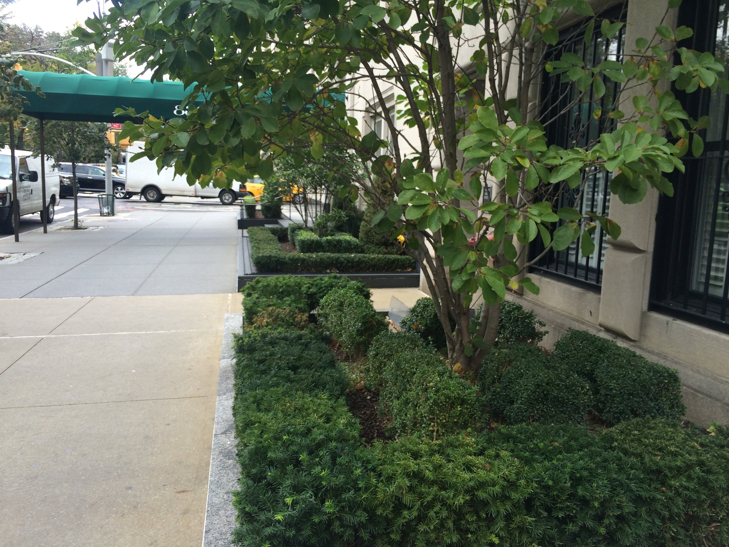 Formal landscape design on Fifth Avenue on Upper East Side of Manhattan. What do landscape design styles say about a world view, and where did they originate?