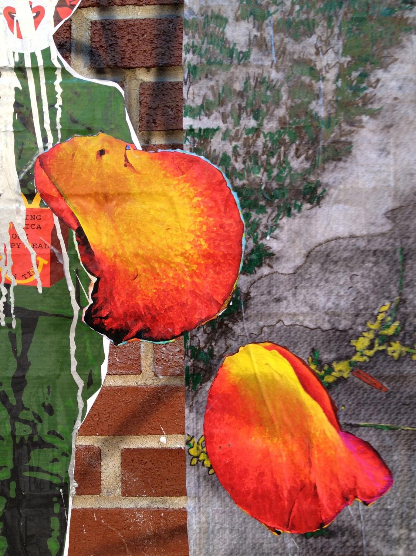 Petal Toss on Spring Street (detail), NYC