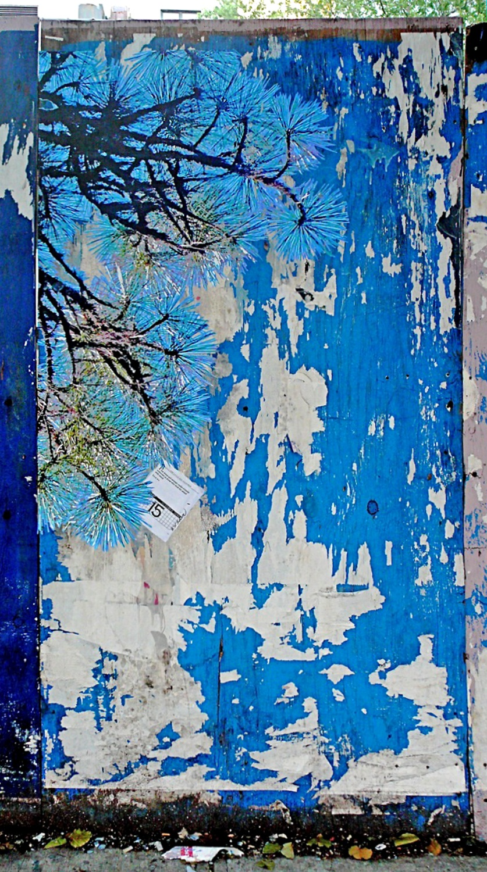 Blue Pine, Varick St., NYC