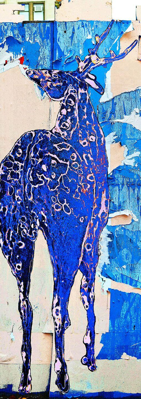 Scroll:  Blue Messenger