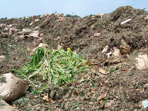 1. Your yard waste on our farm