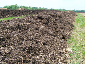 3. Compost reaches a temperature of 160 degrees