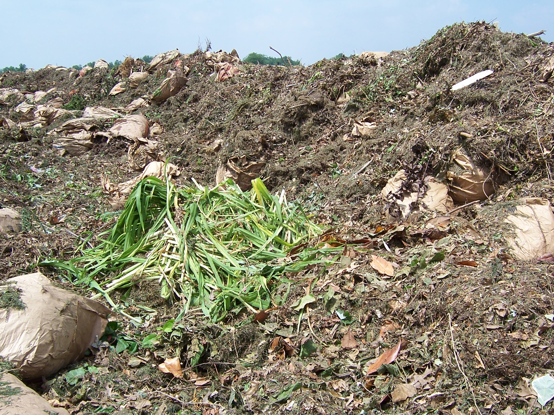 Brown and Green Waste