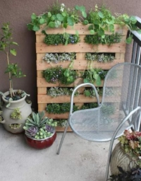 Mounted vertical pallet garden