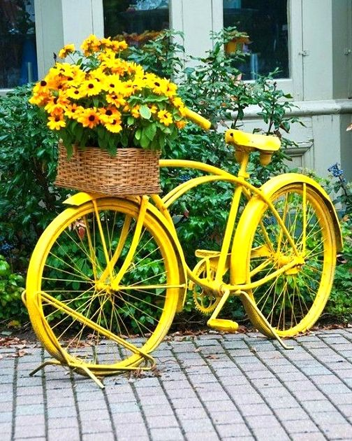 Recycle and paint an old bike for a planter