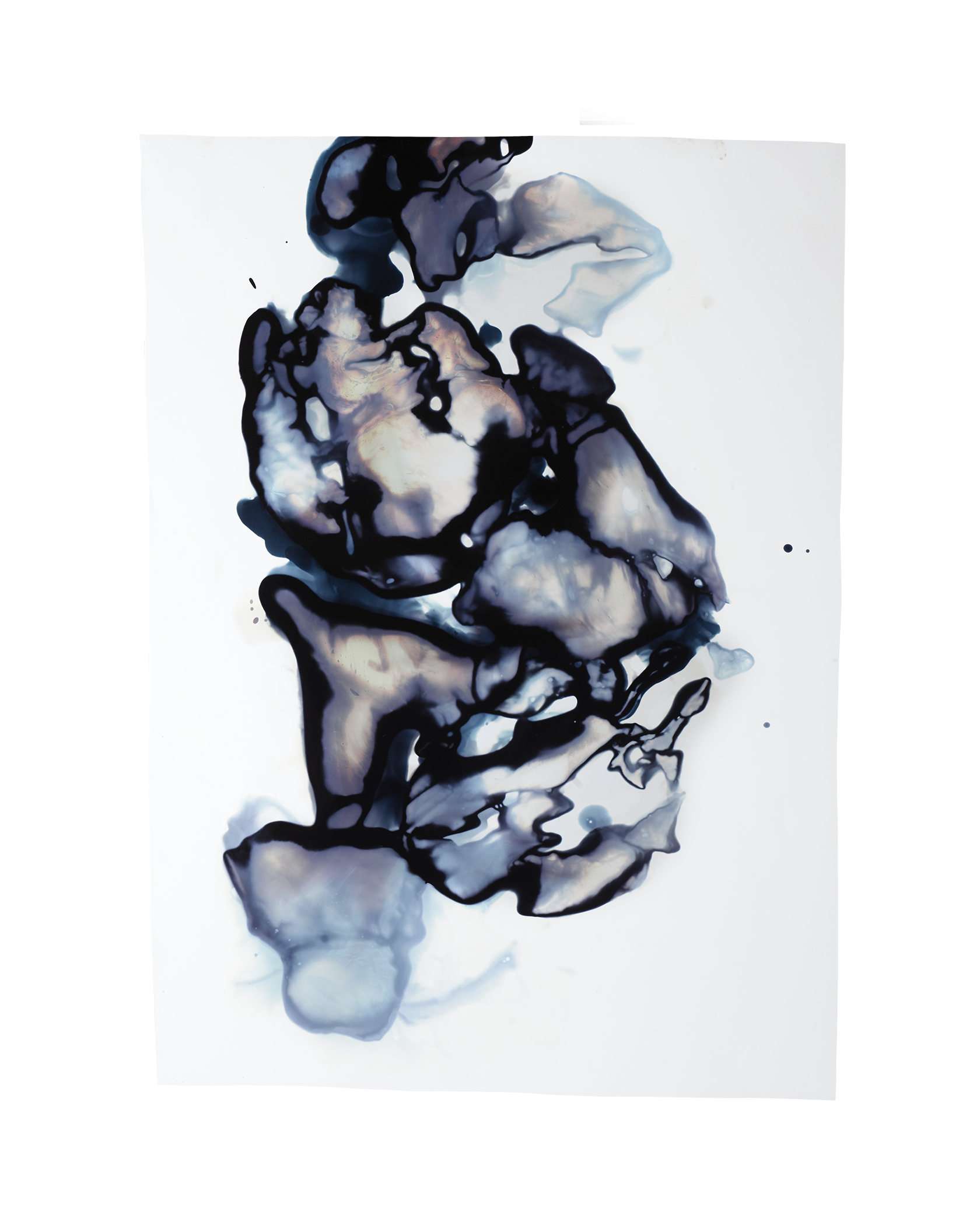 BloodPrint_82_2016_ChemicalgramChromogenicPrint_10.5x14.png
