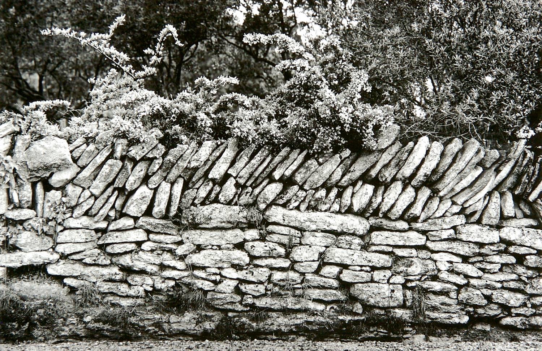 Rock Fence (Gordes, France)