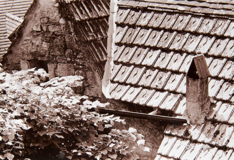 Roofline (Castelnaud-la-Chapelle, France)