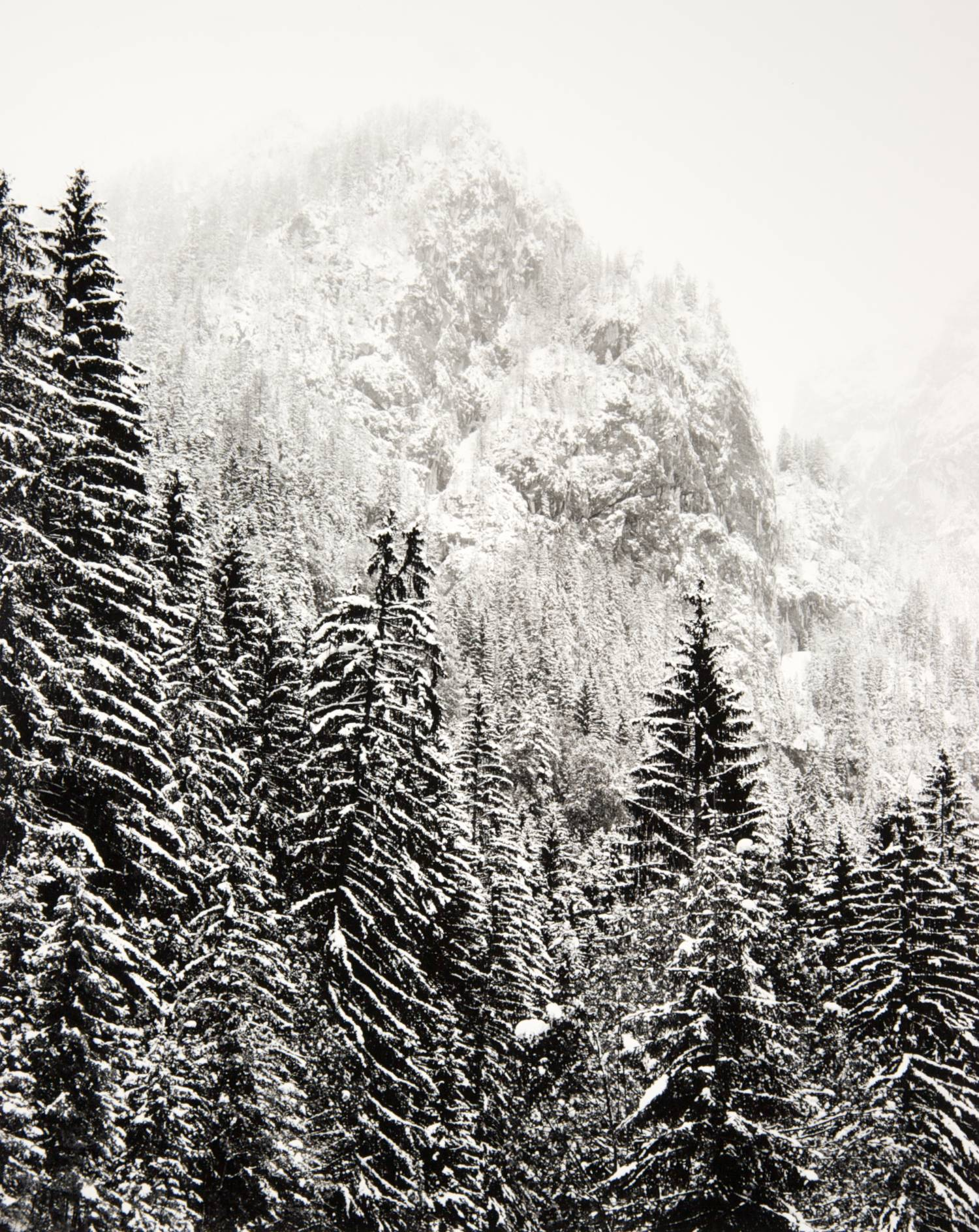 Bavarian Alps I (Berchtesgaden, Germany)
