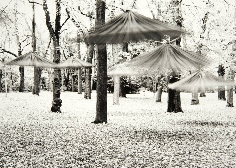 Dancing Umbrellas (Regensburg, Germany)