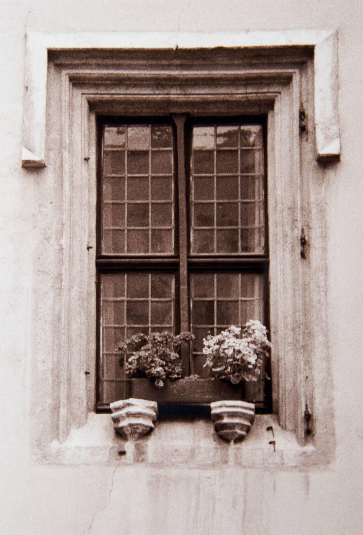 z Window in Regensburg (Germany) 2008.jpg