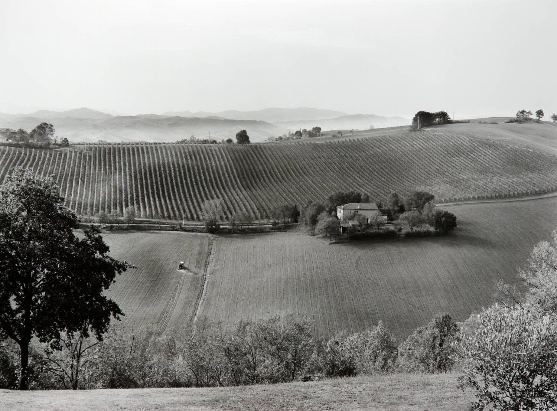 Hillside (Liano, Italy)