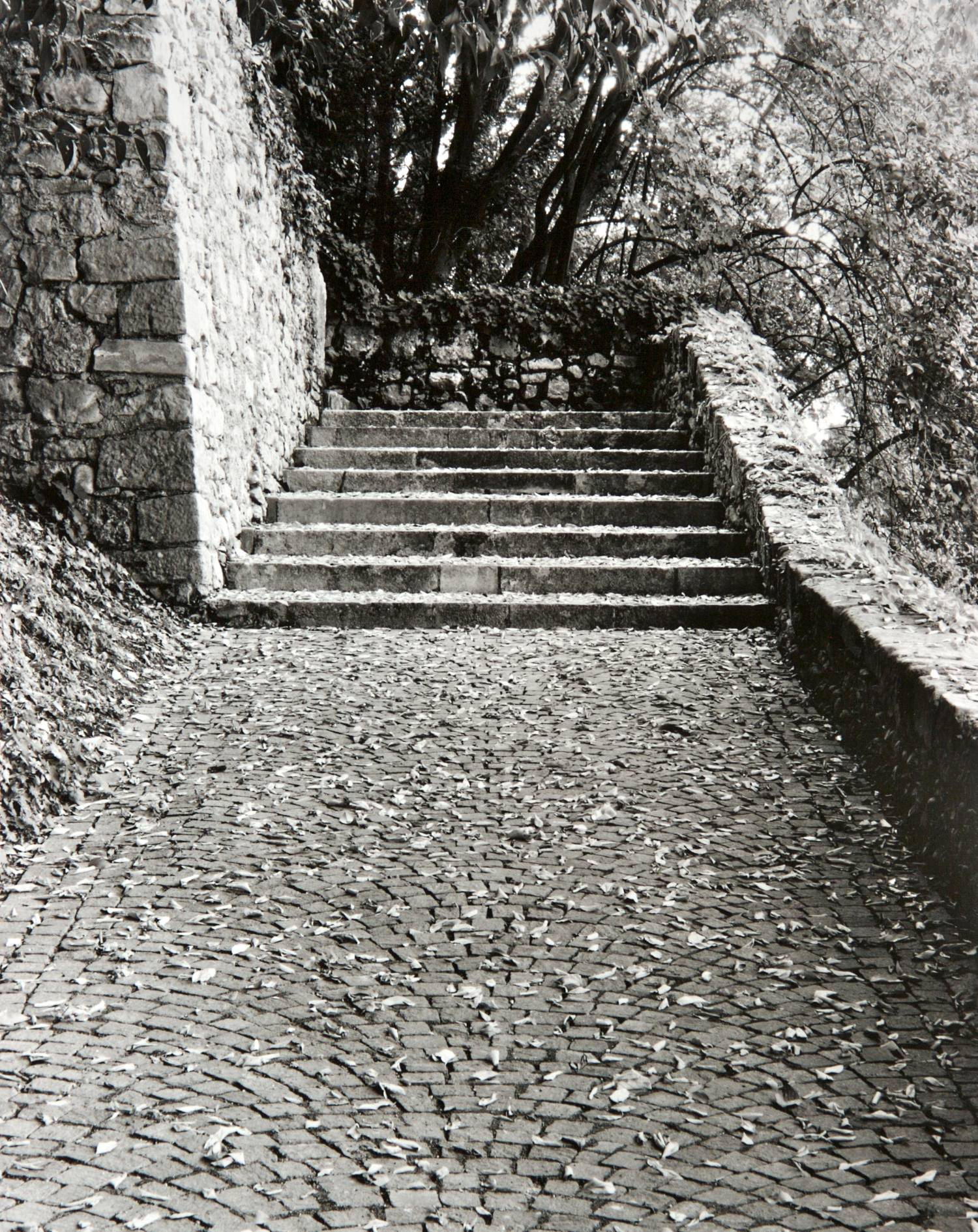 Stairs (Asolo, Italy)