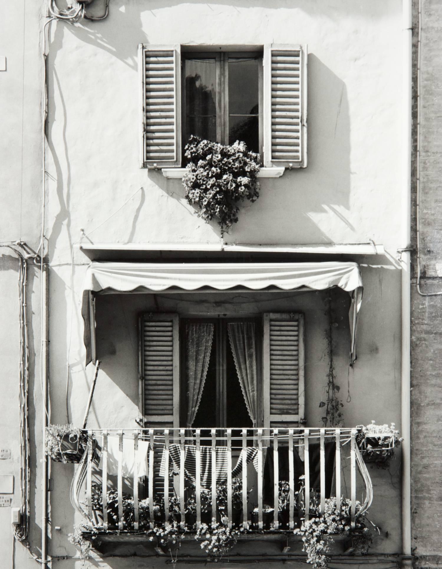 Window in Urbino (Italy)