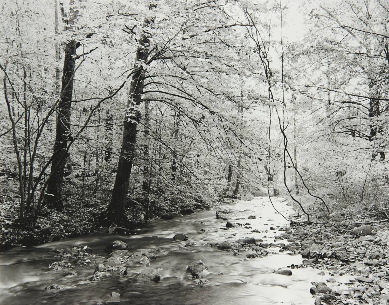 Swift Creek (downstream view) (Virginia)