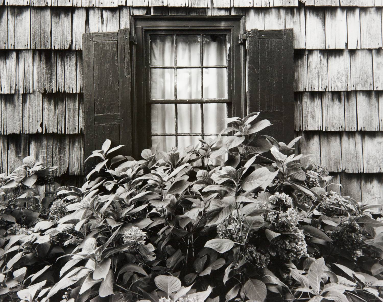 Window in Lewes (Delaware)