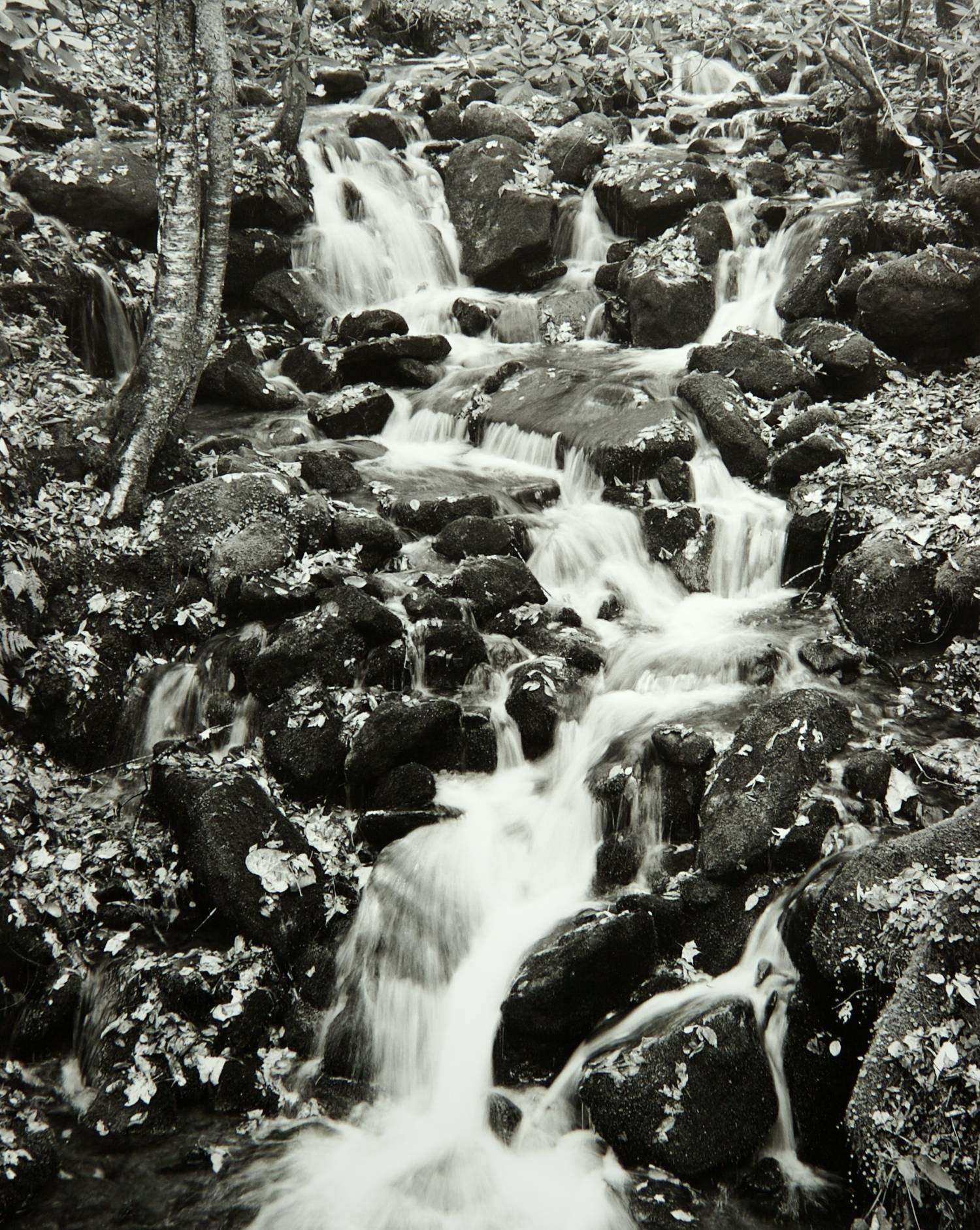 Autumn Waterfall (Great Smoky Mountains National Park)