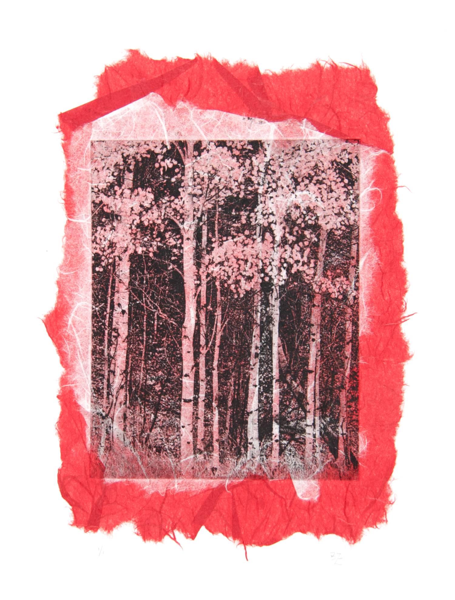 Aspen chine-collé (red/white)