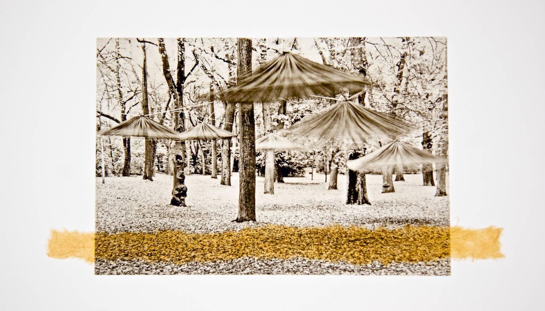 Dancing Umbrellas chine-collé (golden-green)
