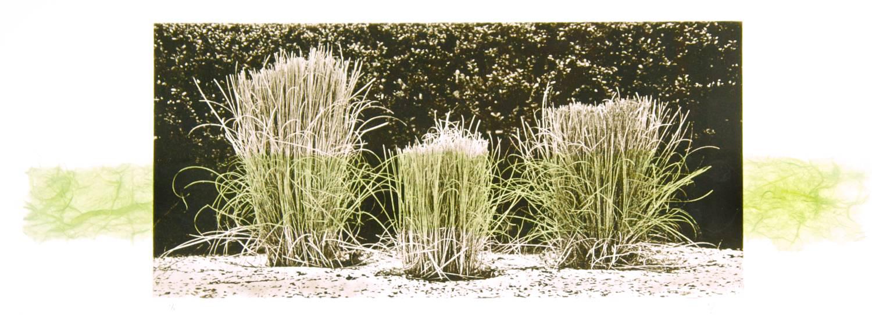 Grass chine-collé (green)