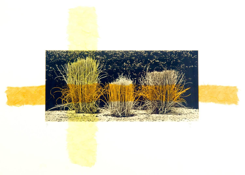 Grass chine-collé (mango/yellow)