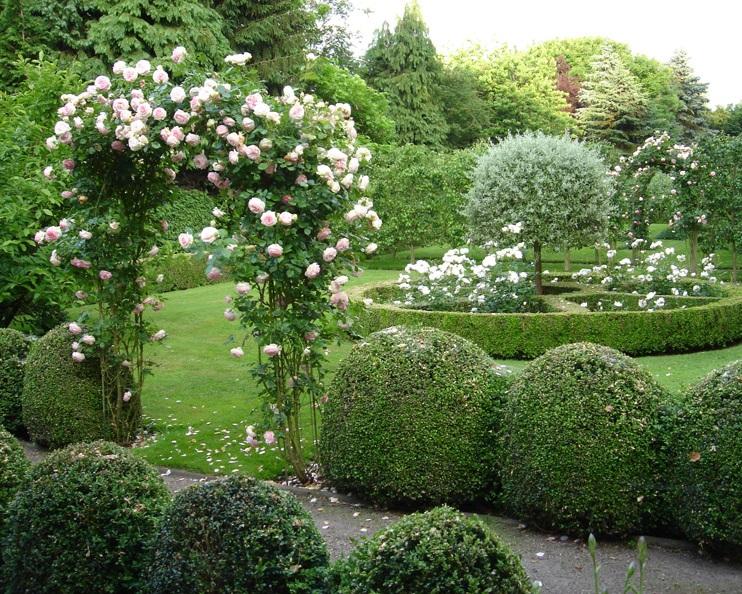 vinderhout+garden+front+today.jpg