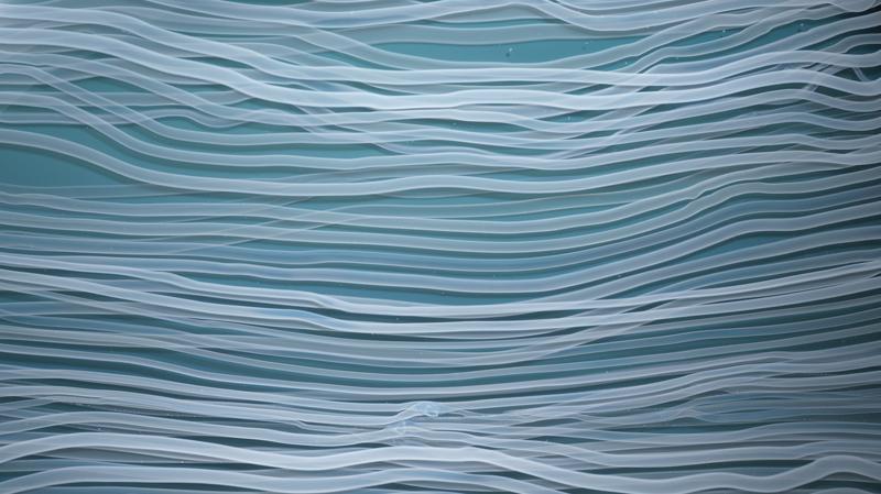 Awash in Blue (detail)