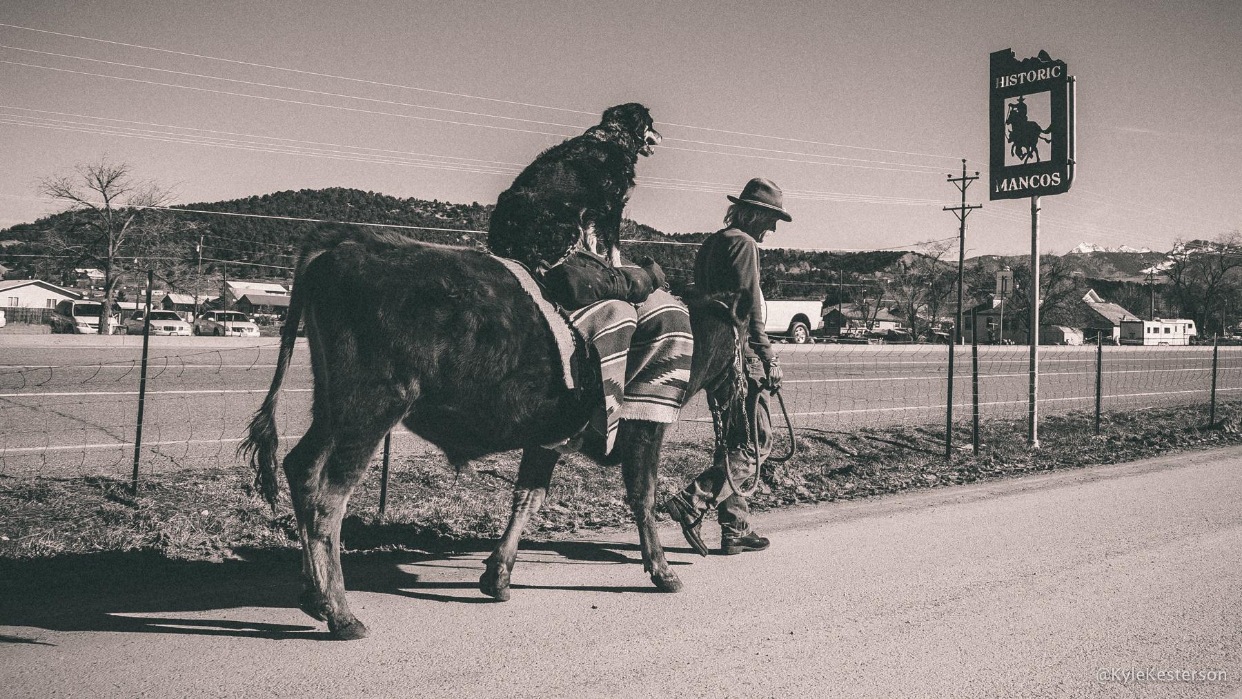f_Arizona_001.jpg