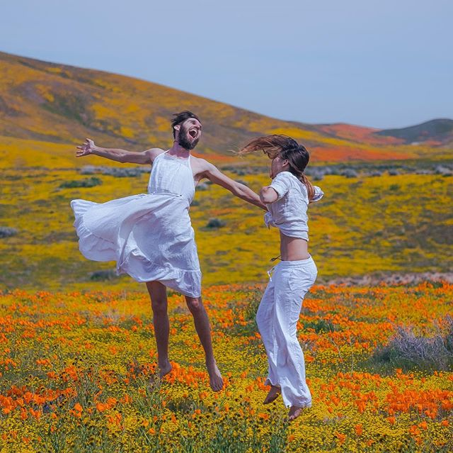 We're alive another day! Let's celebrate! 🌼 *** Note: No flowers were harmed in the making of these photos. All the armchair social media eco-warriors can keep your charged messages to yourself.  #superbloom #superbloom2019 #nvrtmrw #bramflife