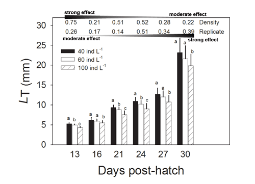 Mean total length, LT (±SD), ofyellowtail kingfish juveniles at different initial stocking densities.The statistical effect size (partial eta-squared) of larvaldensity and replicate variation is given above each samplingpoint.Barsthat share the same letter within each sampling day are not significantlydifferent.