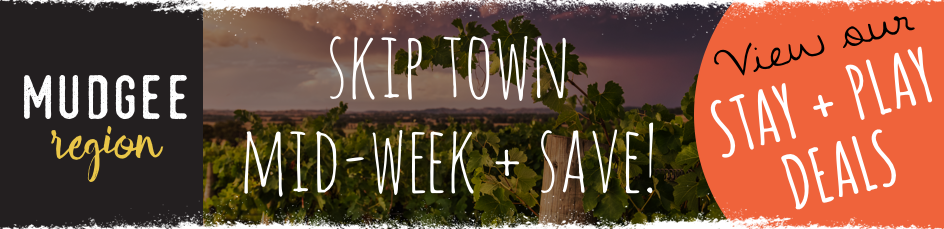 SKIP TOWN BANNER.PNG