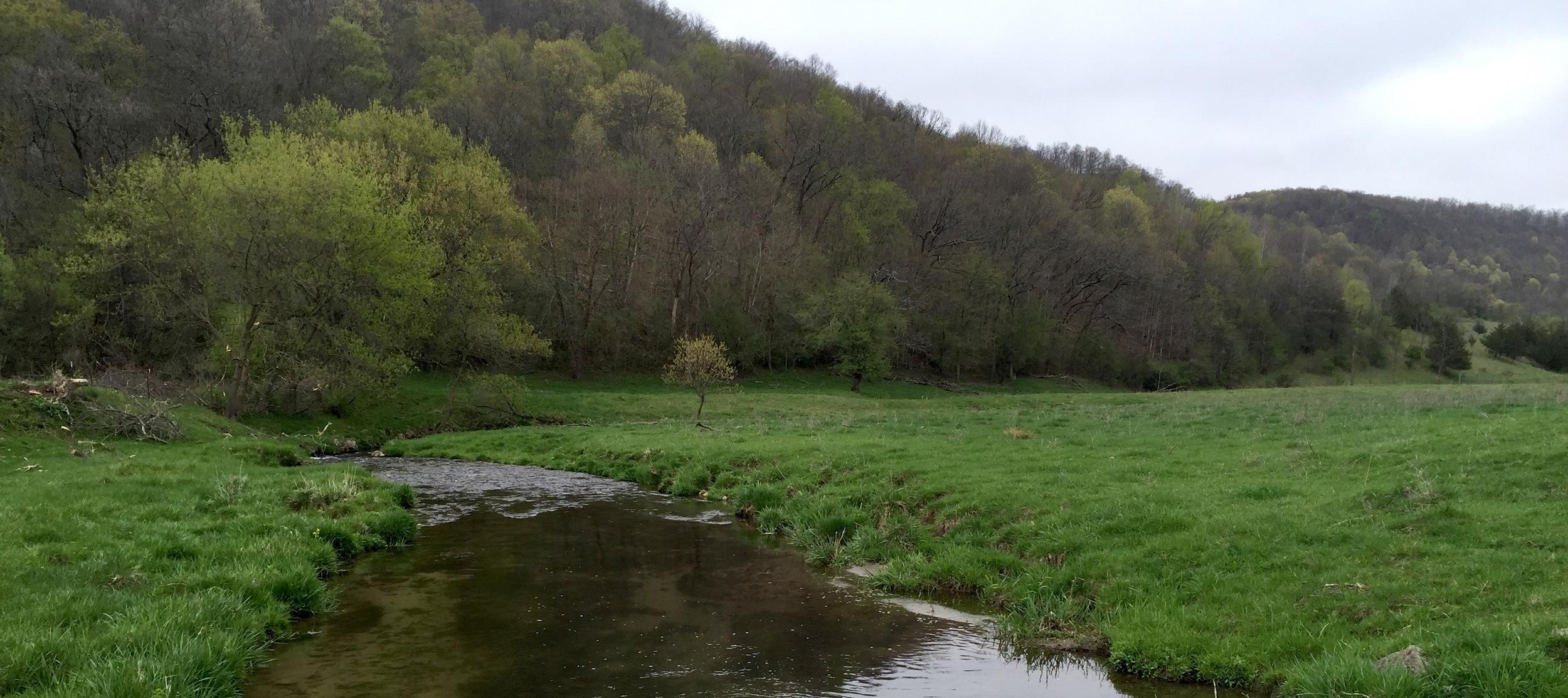 Diftless Valley Creek