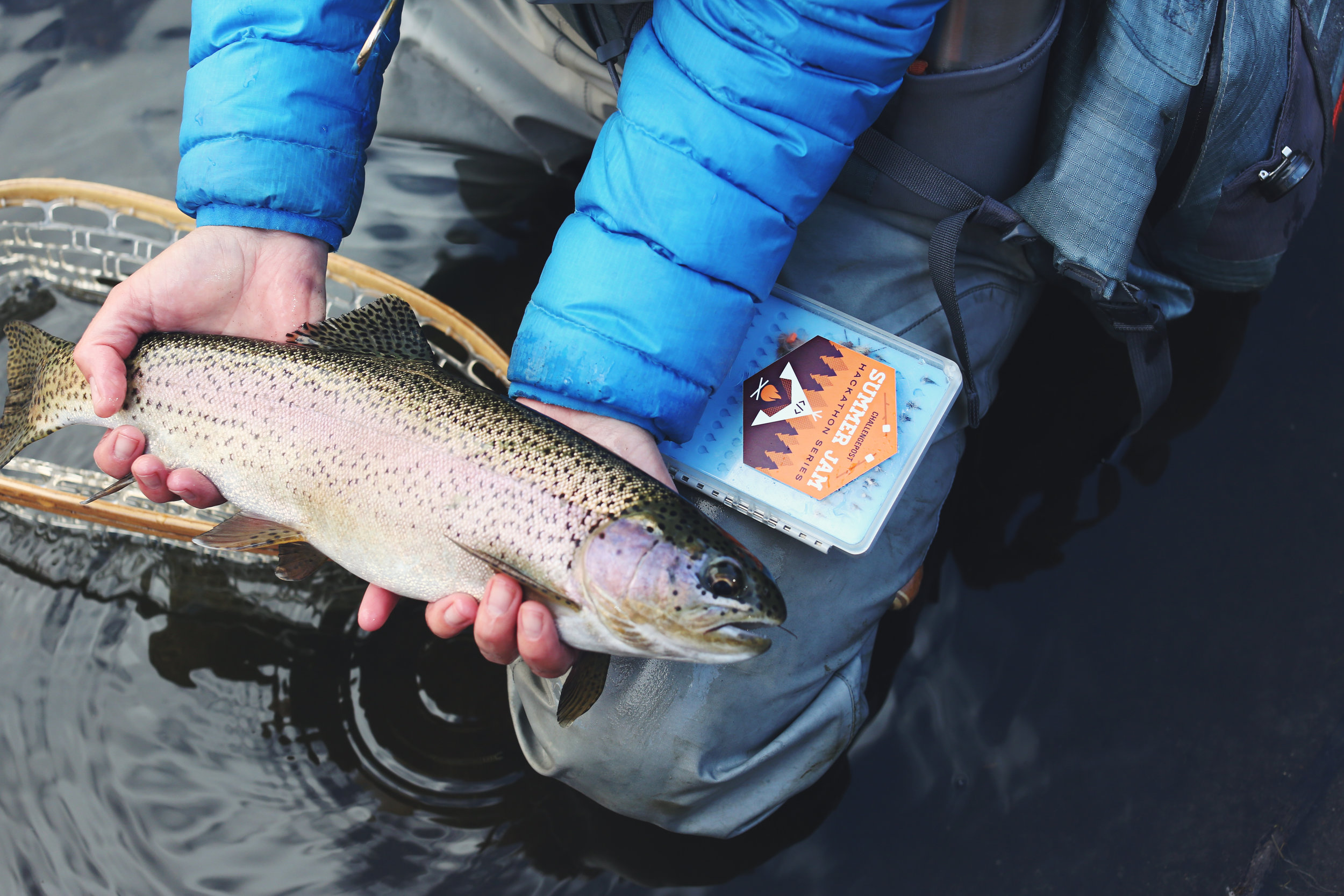 Fly Fishing in the Winter