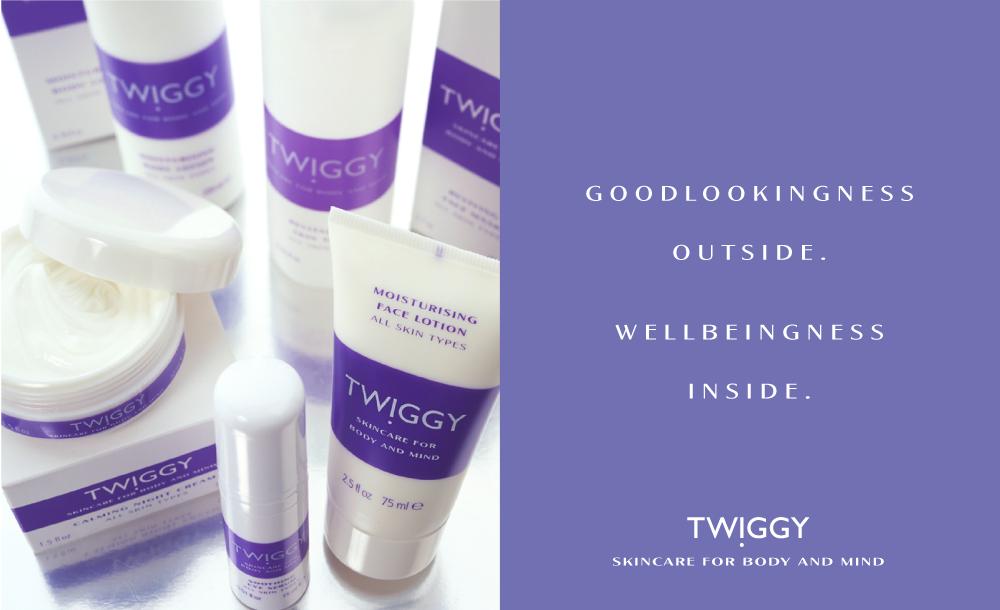 TWIGGY-WEB-ads-03.png