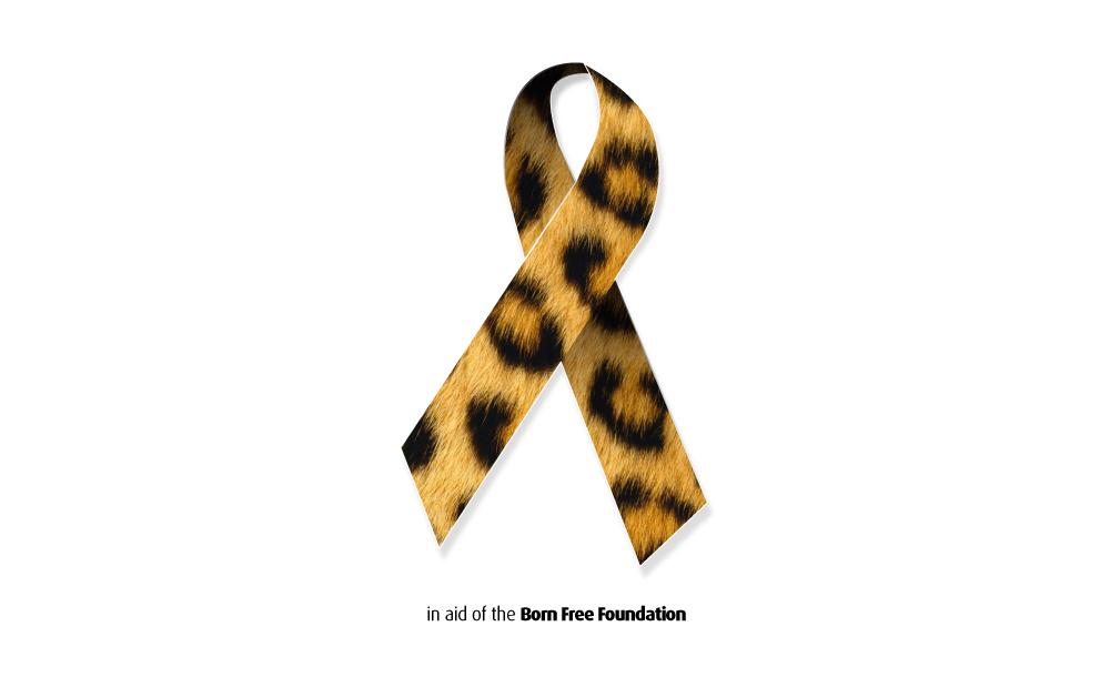 BPCC-WEB-BFF-fundraising-ribbon.png