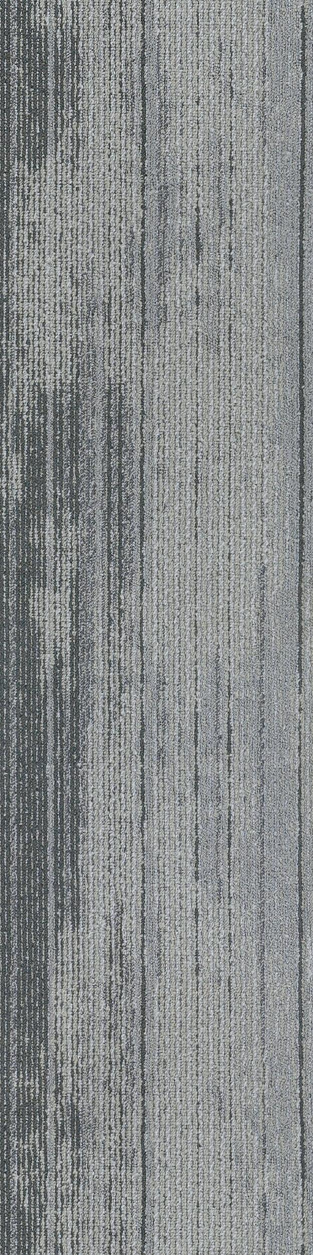 Forest Floor_884_007_100x25_RGB.jpg