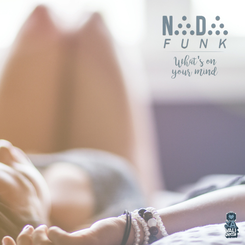 DV059 / Nada Funk - What's on your Mind