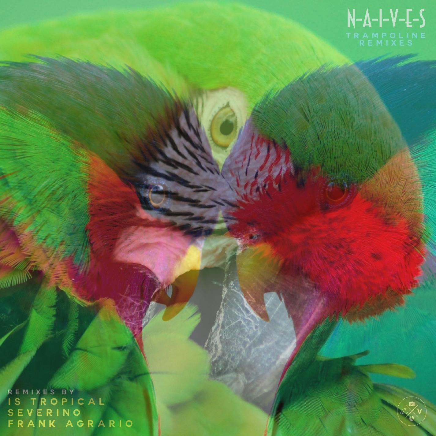 DV066 / N-A-I-V-E-S - Trampoline remixes