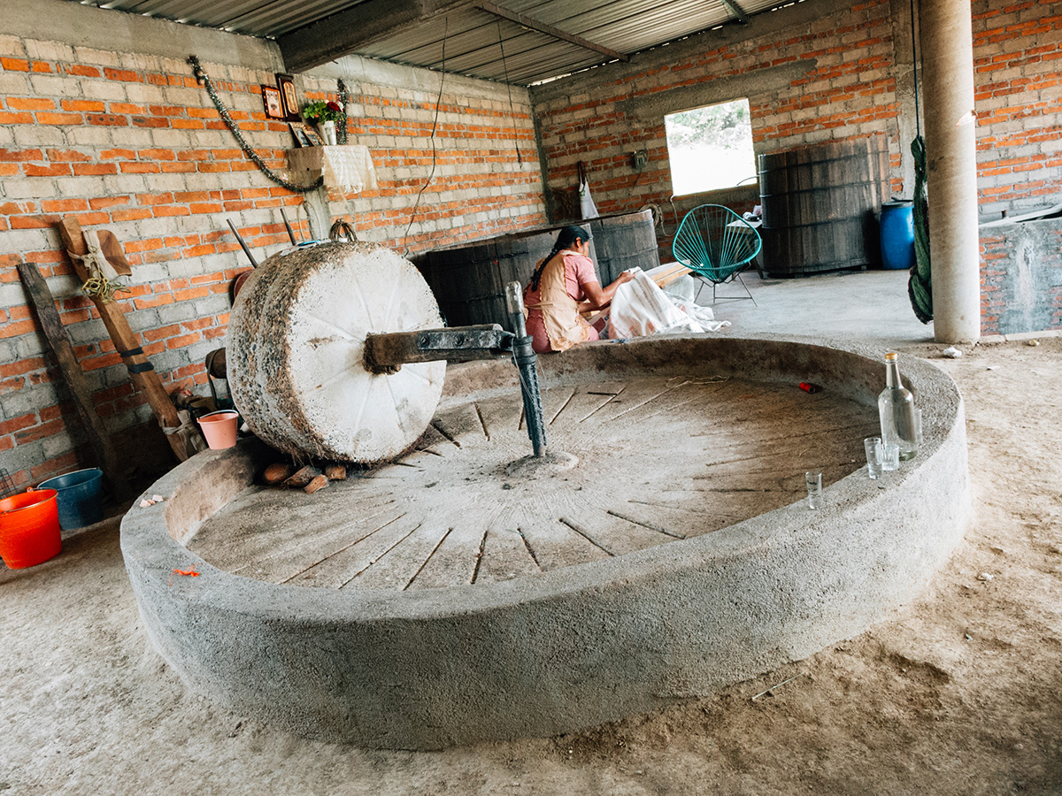 The stone & concrete tahona that many still use to crush the cooked piñas.