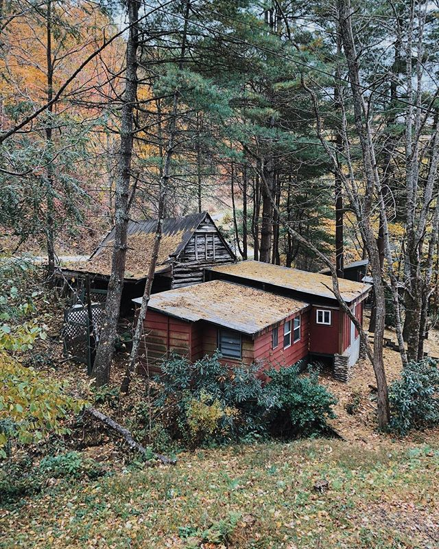 The cabins on Thornton Ln.