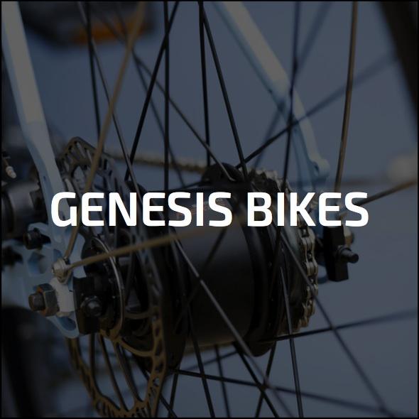 Gensis.jpg