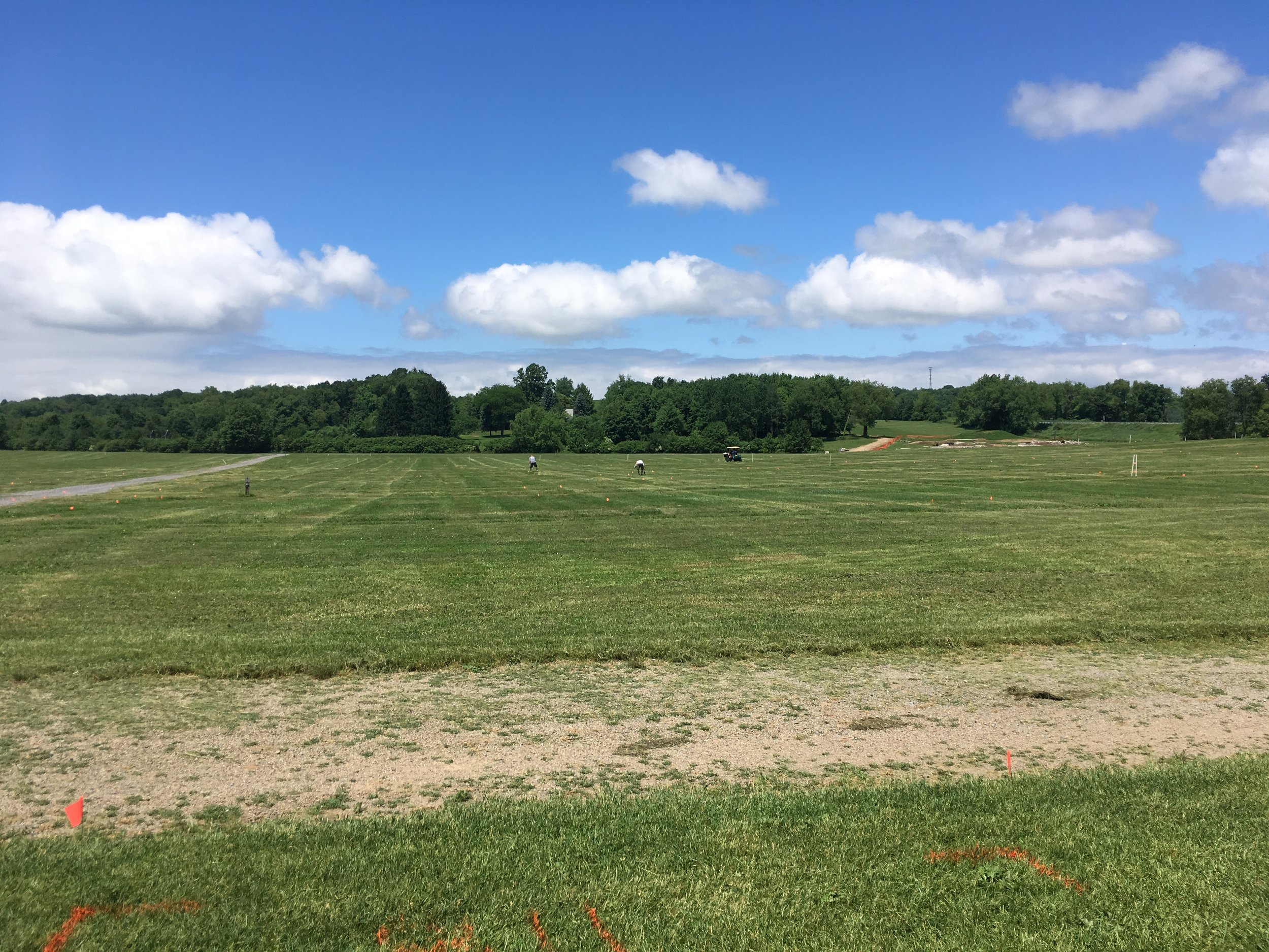 (Above) What the vendor field looks like a week before Bantam!