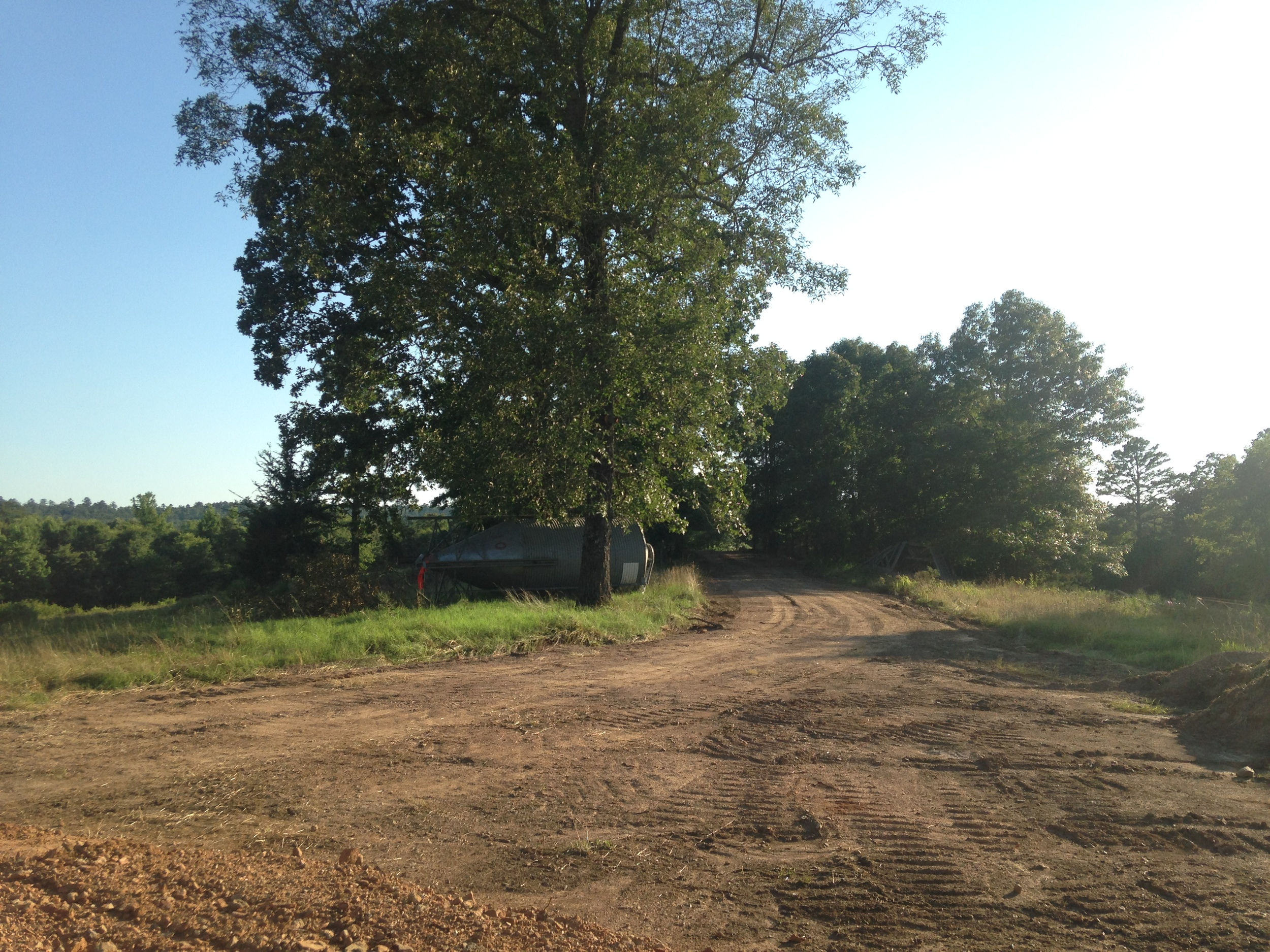 First you must drive off the highway and up a hill. At the top, you will see the new farmstore (eventually) and when you turn right, you'll see this, the road through the trees to our house.