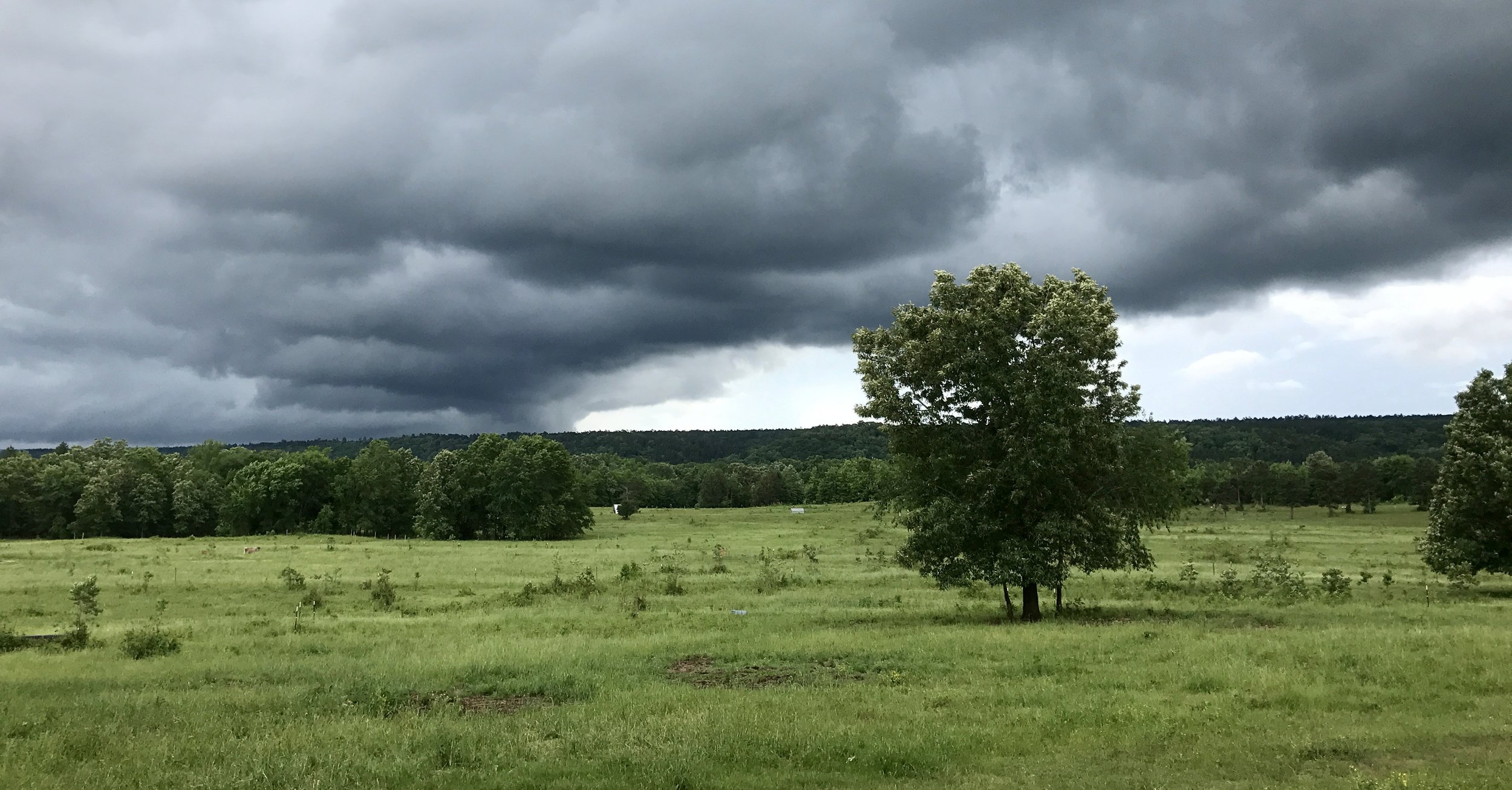 An unusual, westward moving front churning across the farm