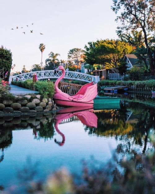 @realadamrose Venice Canal Historic District