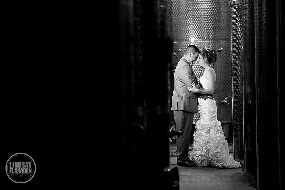 LaBelle Winery Wedding Bride Groom Portrait Wine Vault