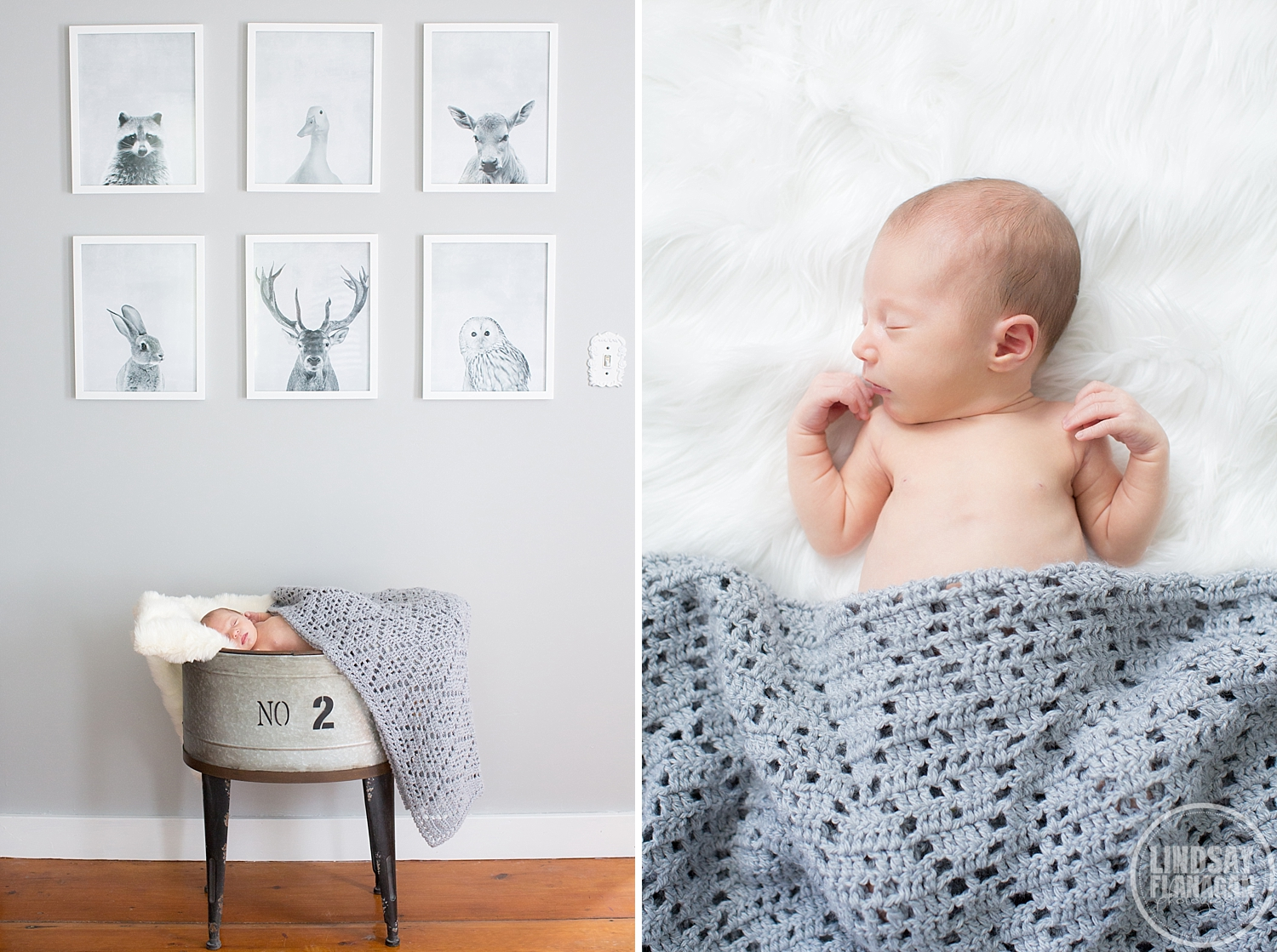 Newborn-Photographer-New-Hampshire-Deerfield-Bright