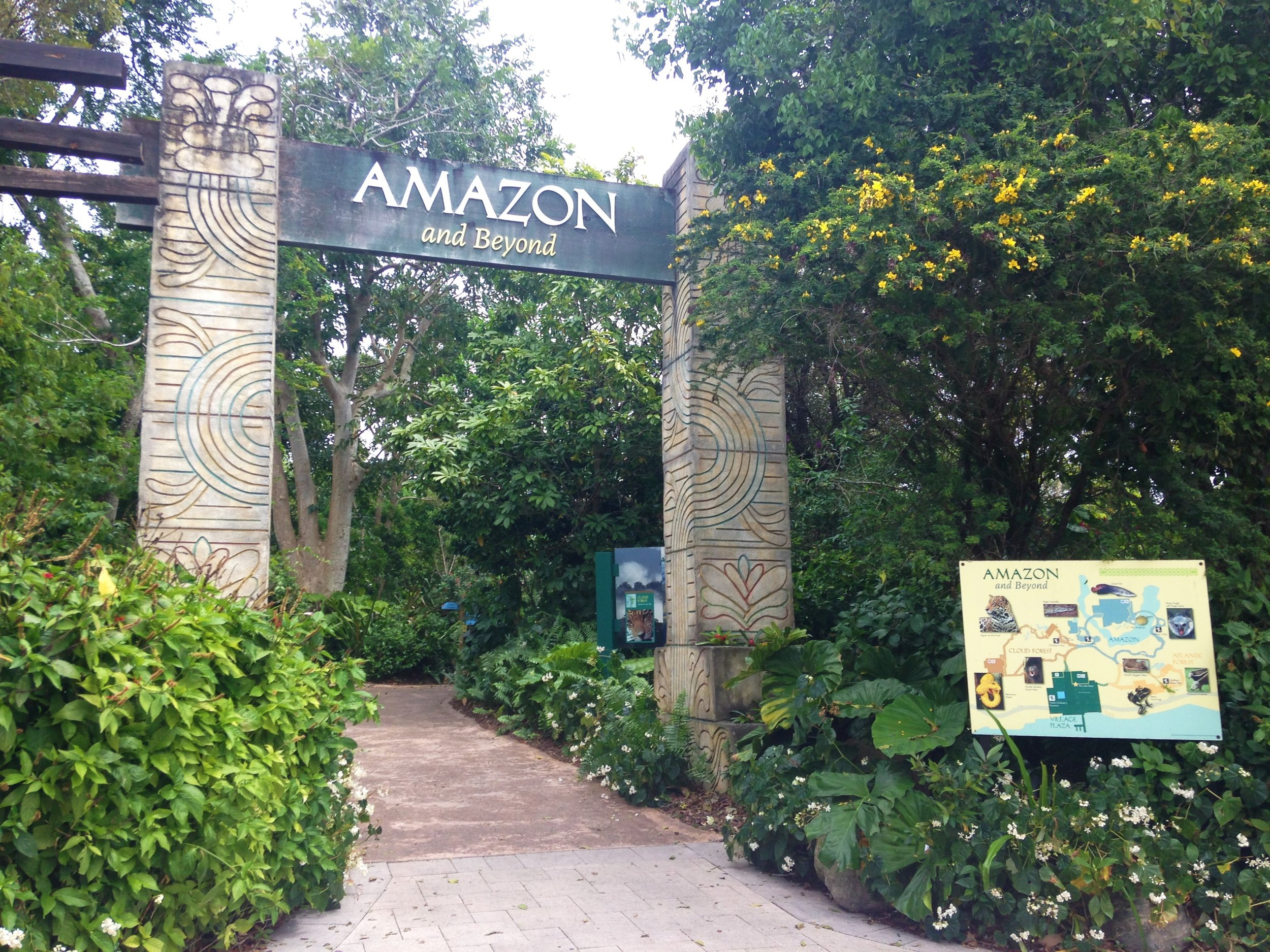 1. Zoo Miami - Zoo Miami's Amazon and Beyond exhibit was done by Jones and Jones. This exhibit allows you to experience some of the world's most diverse ecosystem such as the tropical American rainforest, Amazonia region and more! Take a look at this link for some amazing photos and other wildlife conservation projects Jones and Jones have worked on.https://www.jonesandjones.com/work/wildlife.html